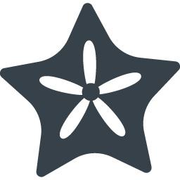 ヒトデのアイコン素材 1 商用可の無料 フリー のアイコン素材をダウンロードできるサイト Icon Rainbow