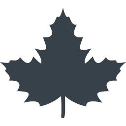楓の葉っぱのアイコン素材 1 商用可の無料 フリー のアイコン素材をダウンロードできるサイト Icon Rainbow