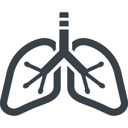 肺のアイコン素材 2 商用可の無料 フリー のアイコン素材をダウンロードできるサイト Icon Rainbow