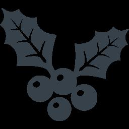 クリスマスのヒイラギの葉と実の無料アイコン素材 3 商用可の無料 フリー のアイコン素材をダウンロードできるサイト Icon Rainbow