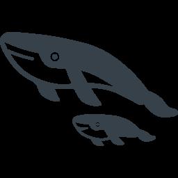 クジラの親子の無料アイコン素材 商用可の無料 フリー のアイコン素材をダウンロードできるサイト Icon Rainbow